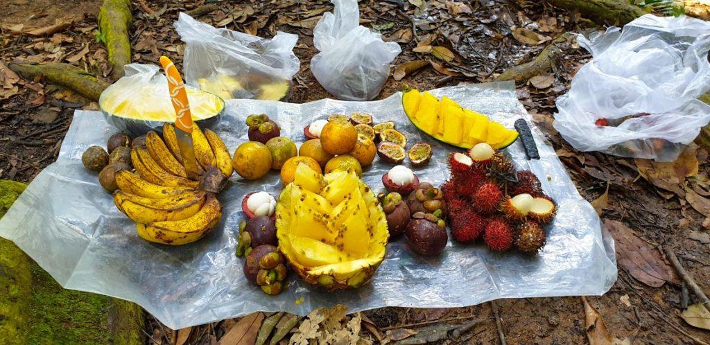 cibo trekking sumatra