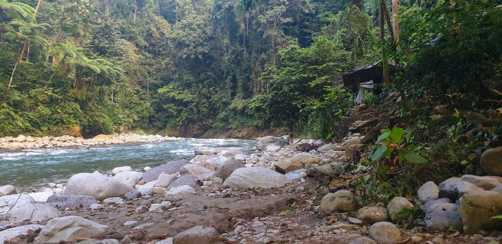 fiume bukit lawang